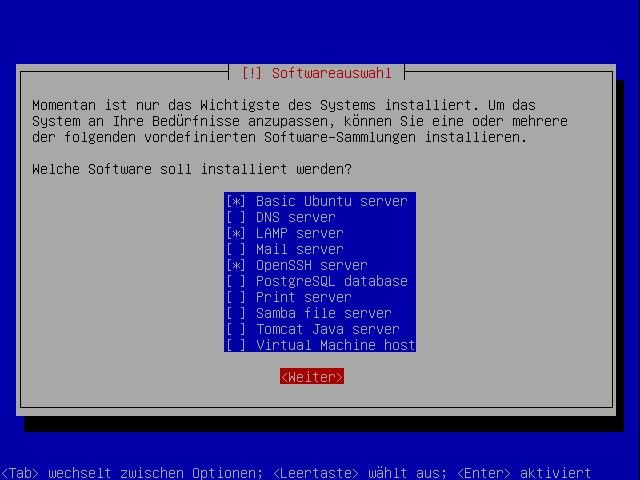 JeOS Installation (04): Software Auswahl