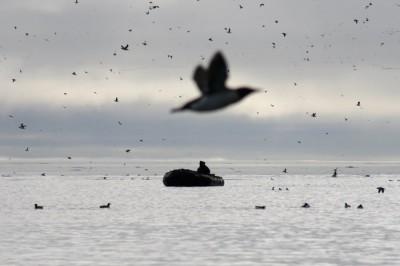Spitzbergen: 2011-07-13 09-58-13