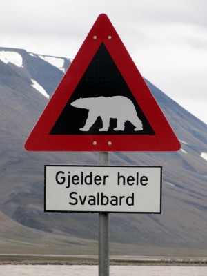 Spitzbergen: 2011-07-21 11-01-21